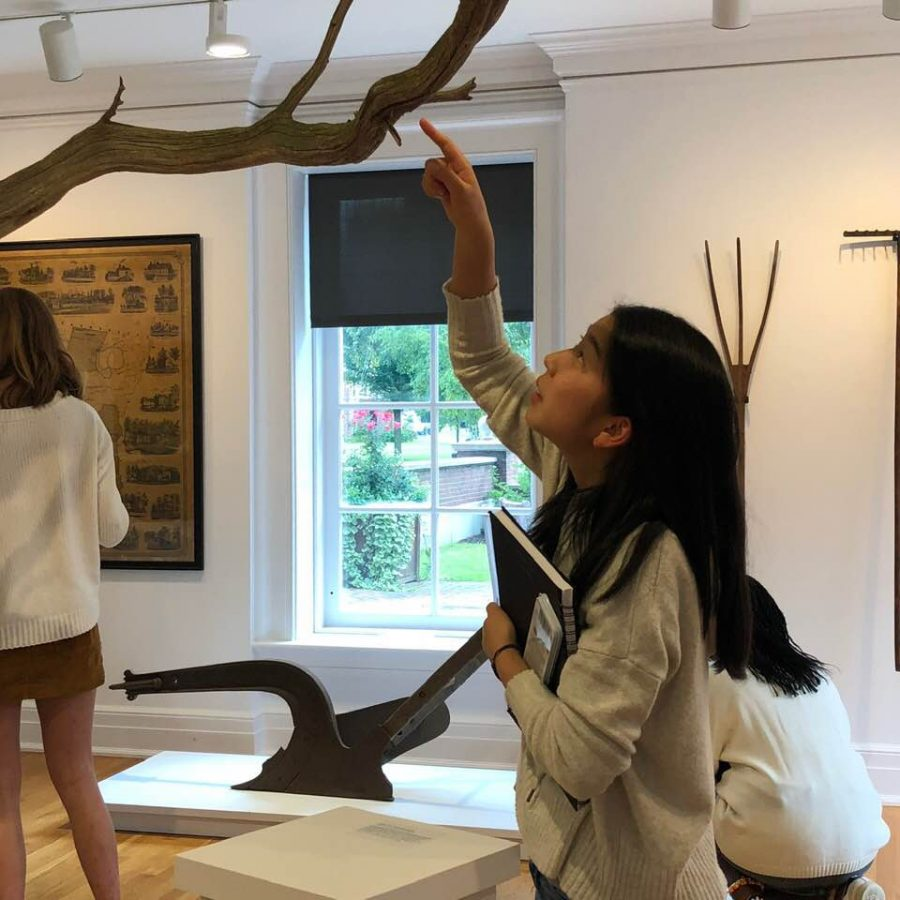 Yuka+Masamura+%E2%80%9921+examines+a+tree+branch+in+the+exhibit.