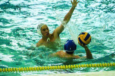 Water Polo Builds Foundation