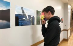 SEA x ink. Exhibit Blends Art and Environmentalism