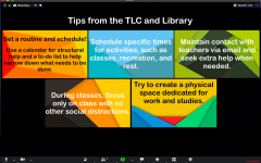 TLC and Library Develop Online Services