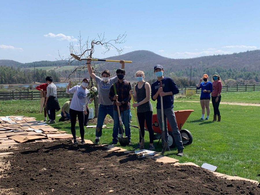 Students enjoy volunteering at the Fairfield Farm during Eco Day in April.